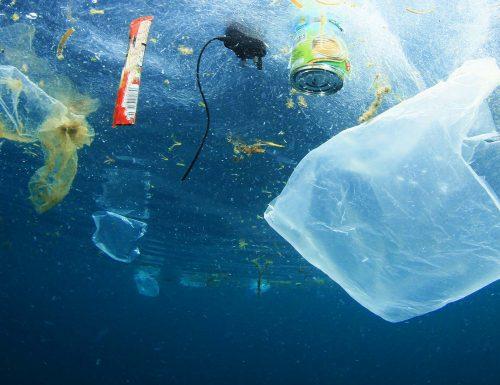La Plastica nel Mare