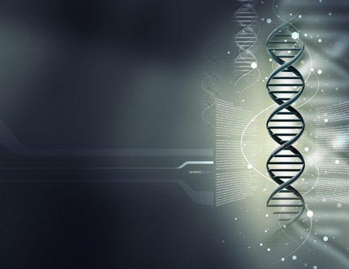 Clonazione: dai mammiferi ai primati, un passo in più verso l'uomo?